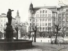 "Fountain ""Svitezianka"""