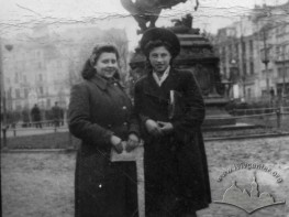 Portrait in the background of Jan Sobieski Monument