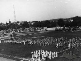 Festival at The Dynamo Stadium