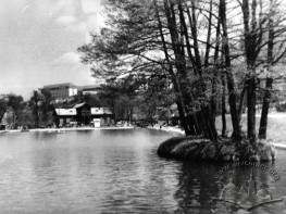 """""""Svitiaz"""" pond"""