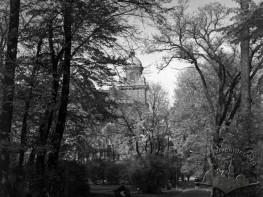 Парк ім. І. Франка