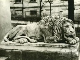 Скульптура сплячого лева перед входом до Будинку архітектора на вул. Підвальній, 4