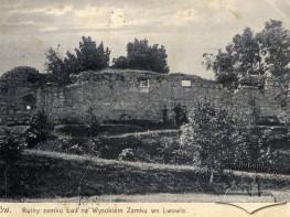 Руїни замку на Високому замку